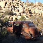 Desert Queen Ranch | Joshua Tree National Park