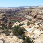 Looking down into Calf Creek