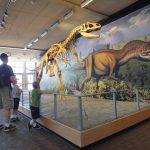 Epic Journey Continues – Dinosaur National Monument