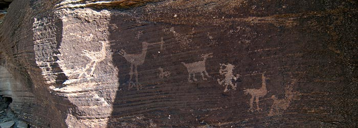 Take a class lead by NPS Archaeologist William Reitz to learn and employ methods for recording and documenting rock art | Photo courtesy of NPS/VIP Susan McElhinney