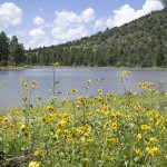 Kaibab Lake Campground on the Williams Ranger District, Kaibab National Forest. | Photo courtesy of U.S. Forest Service, Southwestern Region, Kaibab National Forest.