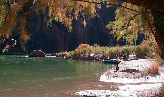 Boat Beach near the mouth of Bright Angel Creek on the Colorado River | Photo by Sjors