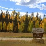 DeMotte Campground | Photo courtesy of Kaibab National Forest Service