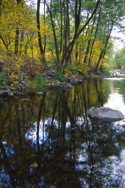 Oak Creek is a verdant paradise for the hiker and its canyon has an interesting story. | Photo by Wayne Ranney