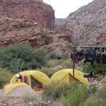 Cottonwood Campsite - Courtesy of NPS by Mike Quinn