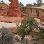 Day hiking Capitol Reef trails