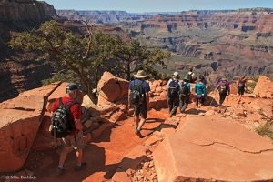 A Grand Canyon Field Institute Class heads down the trail | Photo by Mike Buchheit