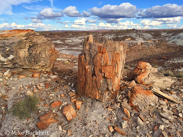 View from Sorrel Mesa on the new Expansion Lands in Petrified Forest National Park | Photo by Mike Buchheit