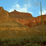Spring is the perfect time for hiking along the Tonto | Photo by Denise Traver