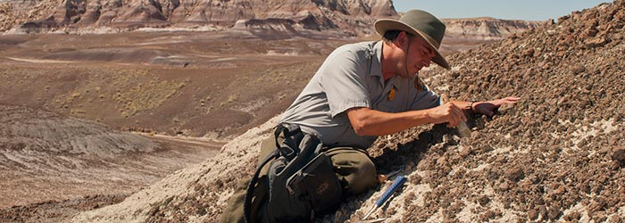 Paleontologist Bill Parker will be leading a dig for the Petrified Forest Field Institute | Photo courtesy of NPS/VIP Susan McElhinney