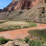 Little Colorado River (LCR) Confluence | Photo by Mike Buchheit