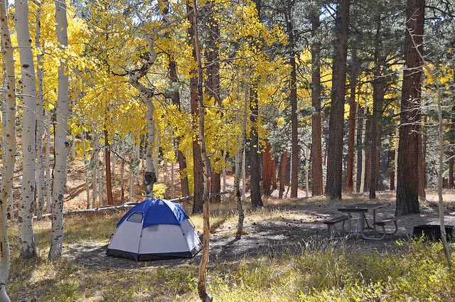 North Rim Campground | NPS Photo by Mike Quinn