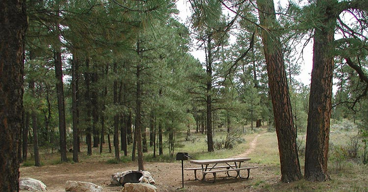 Ten-X Campground | USFS Photo