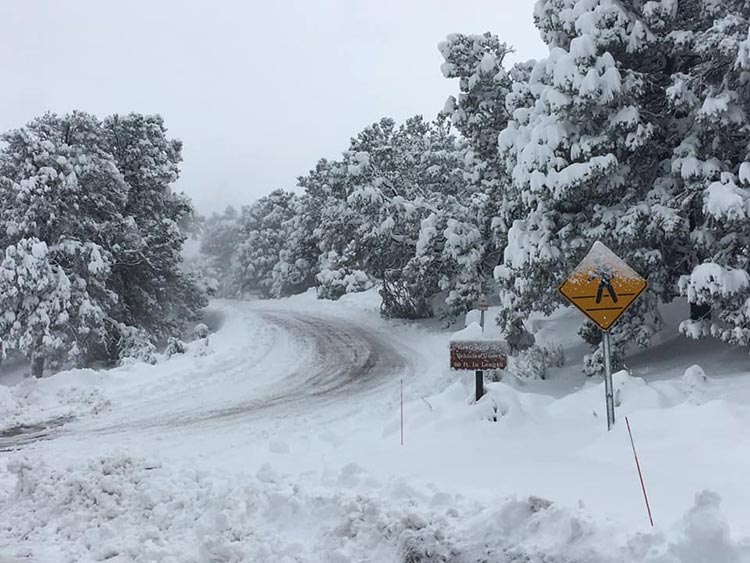 Winter Conditions At Grand Canyon Having Huge Impacts Hit